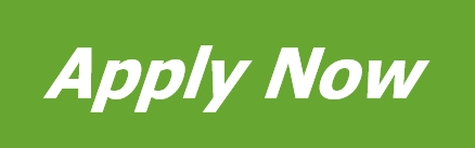 Payday loans now